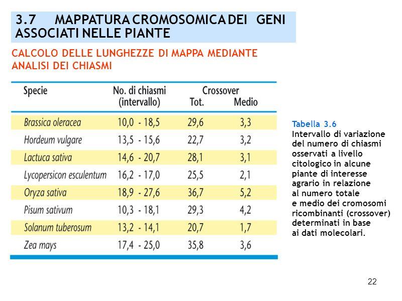 22 3.7 MAPPATURA CROMOSOMICA DEI GENI ASSOCIATI NELLE PIANTE Tabella 3.6 Intervallo di variazione del numero di chiasmi osservati a livello citologico