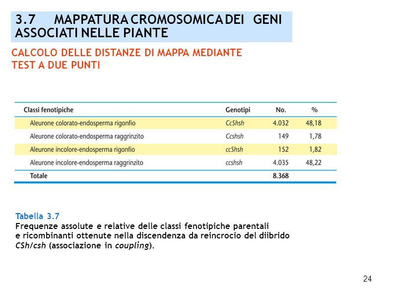 24 3.7 MAPPATURA CROMOSOMICA DEI GENI ASSOCIATI NELLE PIANTE Tabella 3.7 Frequenze assolute e relative delle classi fenotipiche parentali e ricombinan