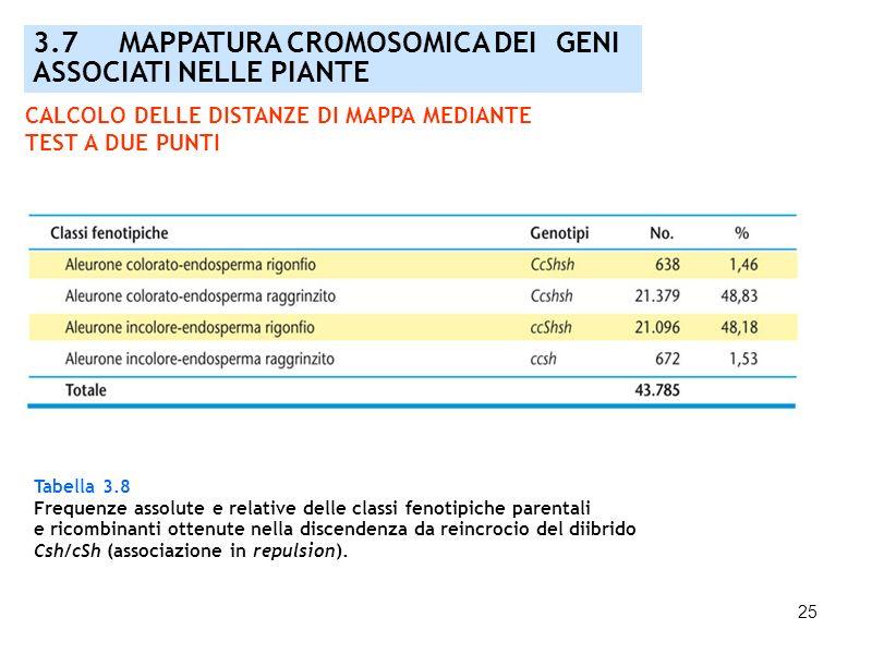 25 3.7 MAPPATURA CROMOSOMICA DEI GENI ASSOCIATI NELLE PIANTE Tabella 3.8 Frequenze assolute e relative delle classi fenotipiche parentali e ricombinan