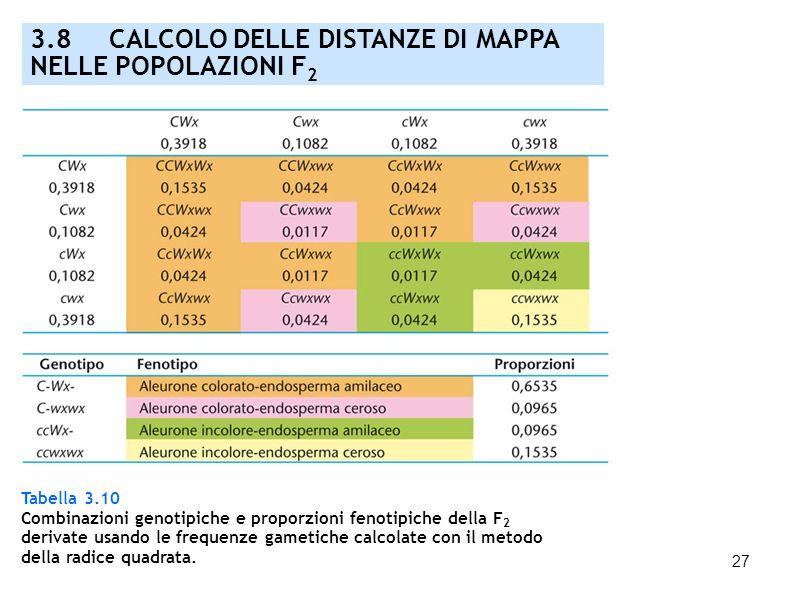 27 3.8 CALCOLO DELLE DISTANZE DI MAPPA NELLE POPOLAZIONI F 2 Tabella 3.10 Combinazioni genotipiche e proporzioni fenotipiche della F 2 derivate usando