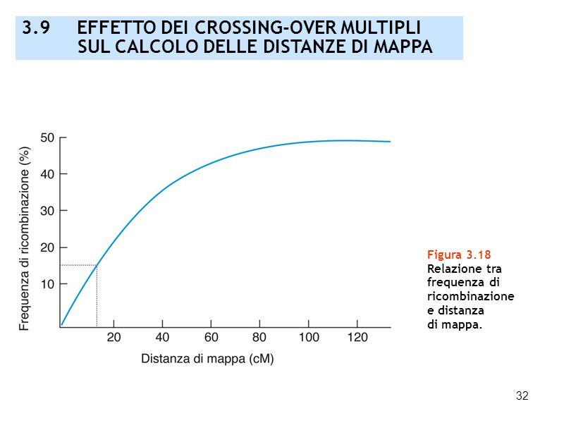 32 Figura 3.18 Relazione tra frequenza di ricombinazione e distanza di mappa. 3.9 EFFETTO DEI CROSSING-OVER MULTIPLI SUL CALCOLO DELLE DISTANZE DI MAP