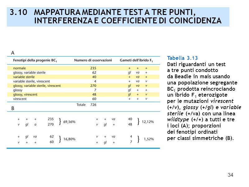 34 3.10 MAPPATURA MEDIANTE TEST A TRE PUNTI, INTERFERENZA E COEFFICIENTE DI COINCIDENZA Tabella 3.13 Dati riguardanti un test a tre punti condotto da