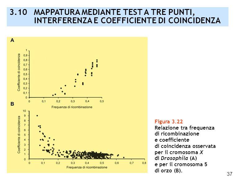 37 Figura 3.22 Relazione tra frequenza di ricombinazione e coefficiente di coincidenza osservata per il cromosoma X di Drosophila (A) e per il cromoso