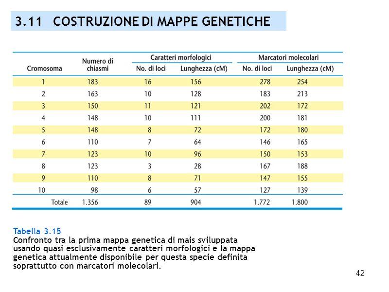 42 Tabella 3.15 Confronto tra la prima mappa genetica di mais sviluppata usando quasi esclusivamente caratteri morfologici e la mappa genetica attualm
