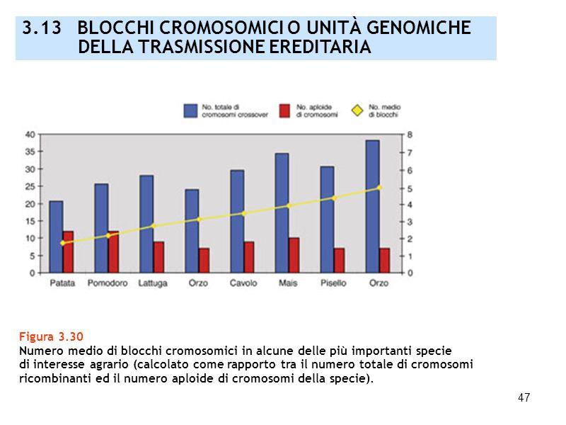 47 Figura 3.30 Numero medio di blocchi cromosomici in alcune delle più importanti specie di interesse agrario (calcolato come rapporto tra il numero t