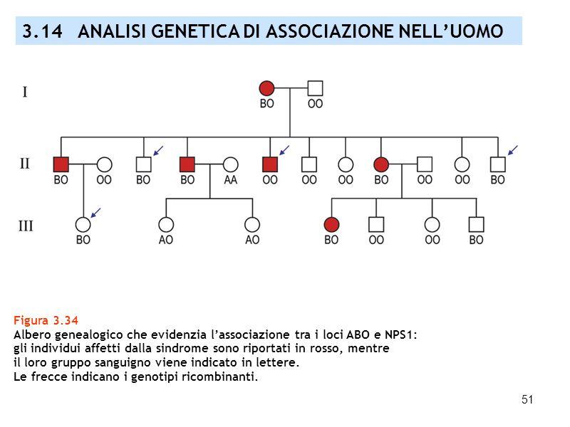 51 Figura 3.34 Albero genealogico che evidenzia lassociazione tra i loci ABO e NPS1: gli individui affetti dalla sindrome sono riportati in rosso, men