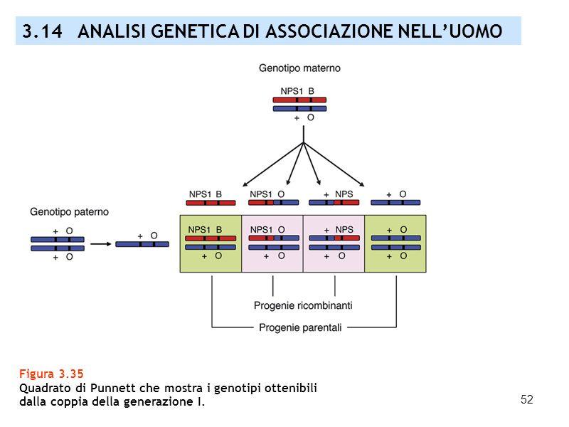 52 Figura 3.35 Quadrato di Punnett che mostra i genotipi ottenibili dalla coppia della generazione I. 3.14 ANALISI GENETICA DI ASSOCIAZIONE NELLUOMO