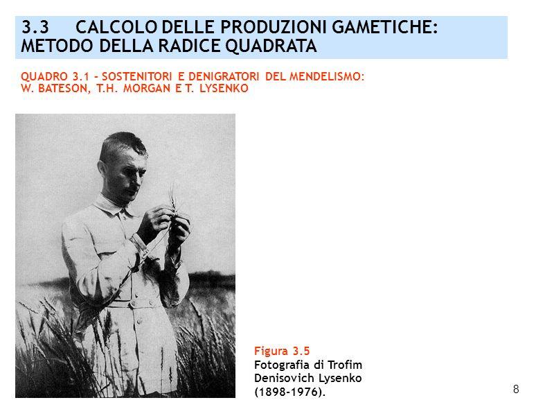 8 Figura 3.5 Fotografia di Trofim Denisovich Lysenko (1898-1976). 3.3 CALCOLO DELLE PRODUZIONI GAMETICHE: METODO DELLA RADICE QUADRATA QUADRO 3.1 – SO