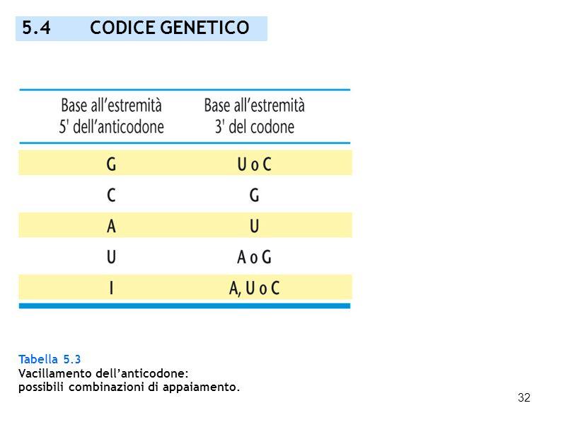 32 Tabella 5.3 Vacillamento dellanticodone: possibili combinazioni di appaiamento. 5.4 CODICE GENETICO