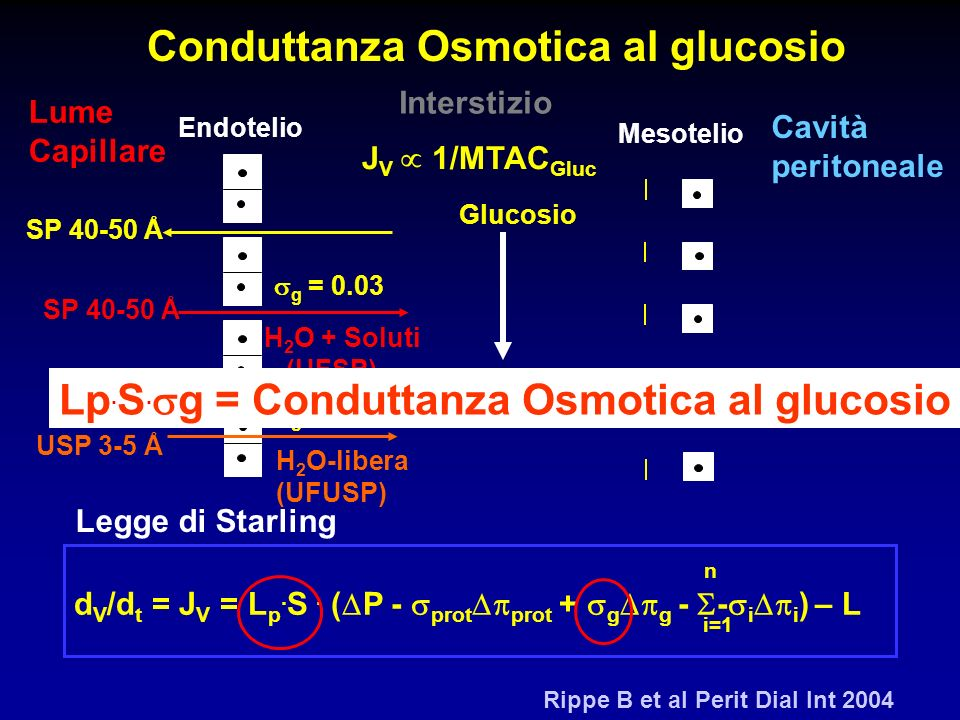 SP 40-50 Å Endotelio Mesotelio Glucosio USP 3-5 Å UF Osmotica H 2 O-libera (UFUSP) H 2 O + Soluti (UFSP) SP 40-50 Å g = 0.03 g = 1 n d V /d t = J V =
