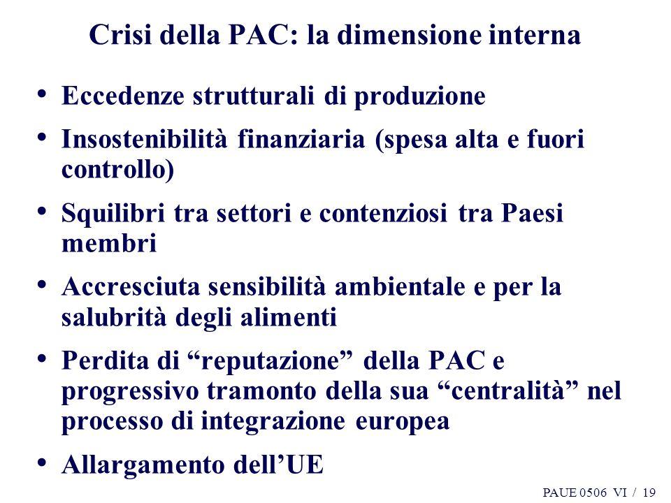PAUE 0506 VI / 19 Crisi della PAC: la dimensione interna Eccedenze strutturali di produzione Insostenibilità finanziaria (spesa alta e fuori controllo