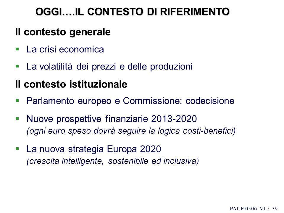 PAUE 0506 VI / 39 Il contesto generale La crisi economica La volatilità dei prezzi e delle produzioni Il contesto istituzionale Parlamento europeo e C