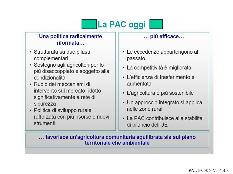 PAUE 0506 VI / 40