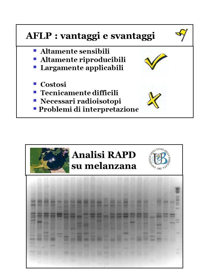 AFLP : vantaggi e svantaggi Altamente sensibili Altamente riproducibili Largamente applicabili Costosi Tecnicamente difficili Necessari radioisotopi P