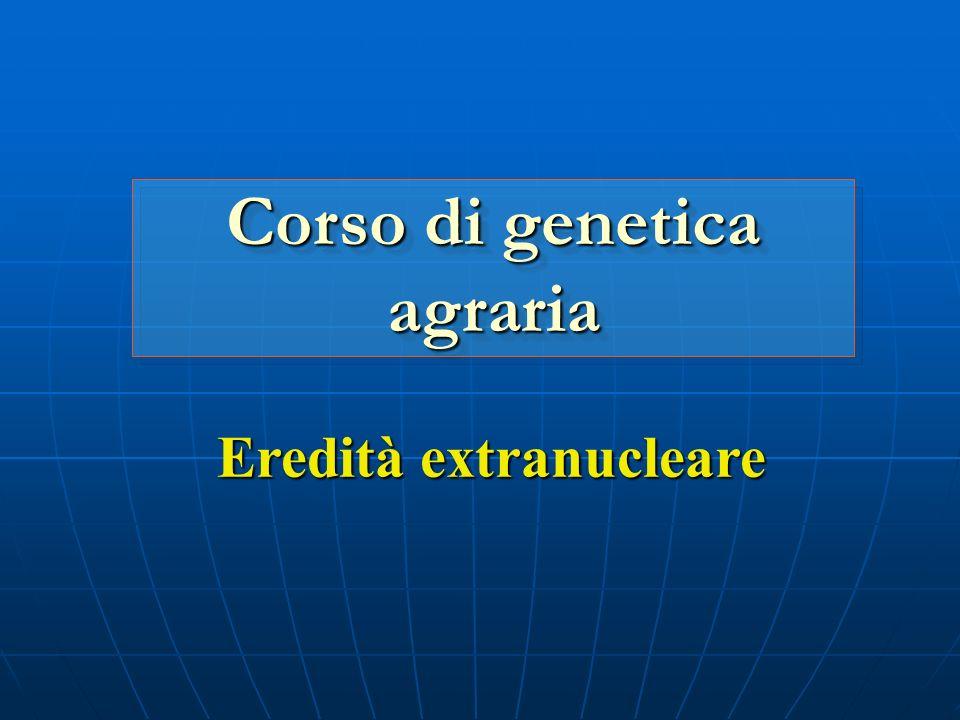Eredità extranucleare Corso di genetica agraria
