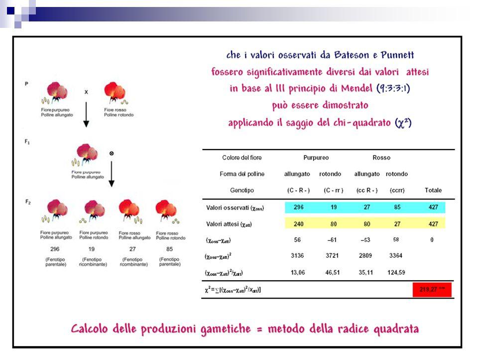 Il chi quadro indica la misura in cui le frequenze osservate in ogni casella della tabella differiscono dalle frequenze che ci aspetteremmo se non ci fosse associazione fra i due caratteri.