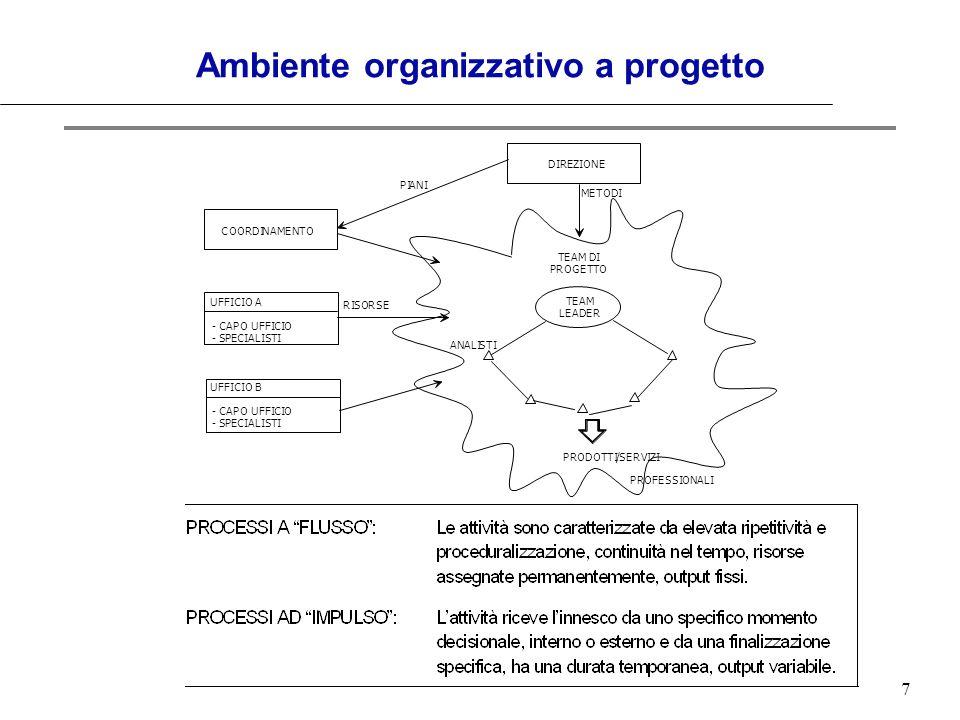 7 Ambiente organizzativo a progetto