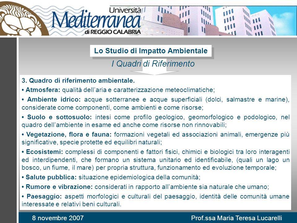 8 novembre 2007 Prof.ssa Maria Teresa Lucarelli Lo Studio di Impatto Ambientale I Quadri di Riferimento 3.