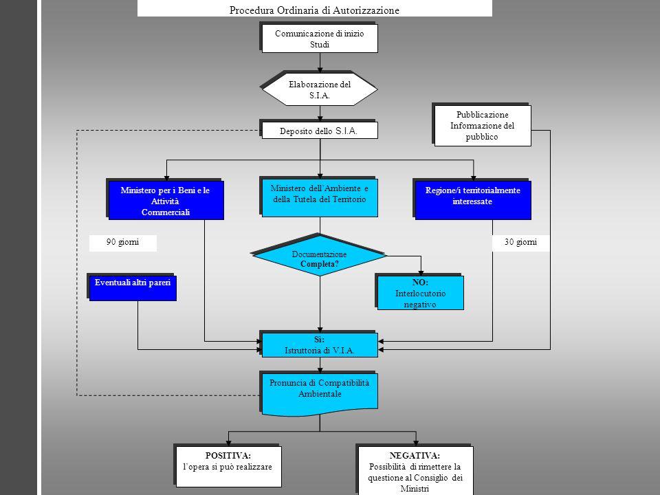 Procedura Ordinaria di Autorizzazione Comunicazione di inizio Studi Elaborazione del S.I.A. Deposito dello S.I.A. Ministero dellAmbiente e della Tutel
