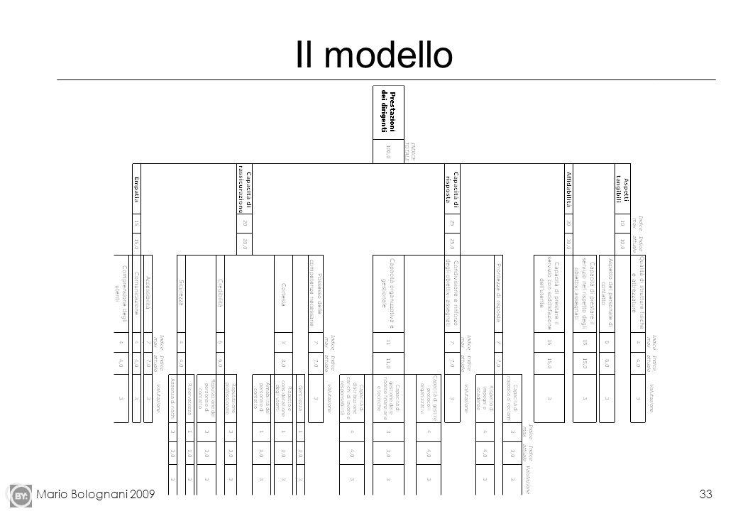 Mario Bolognani 200933 Il modello