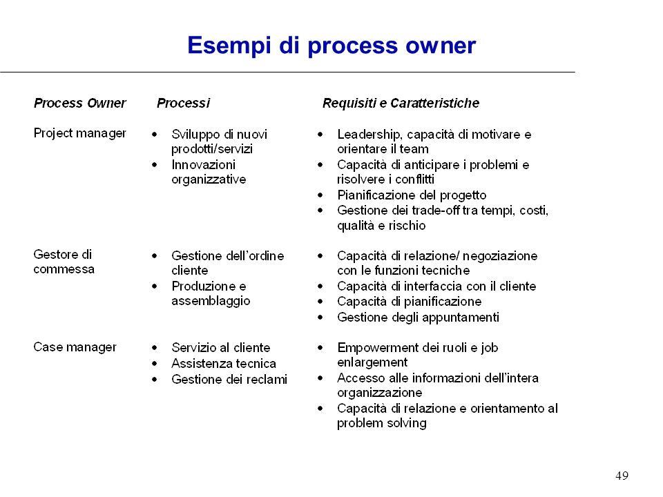 49 Esempi di process owner