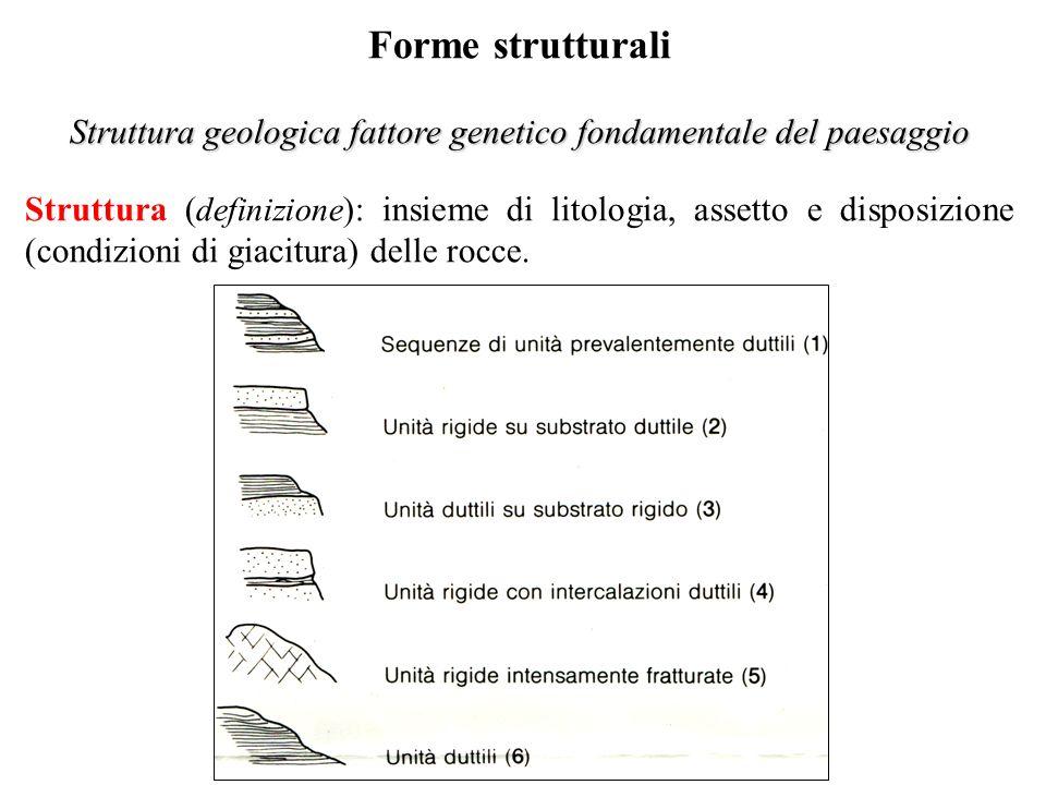 Forme strutturali Struttura geologica fattore genetico fondamentale del paesaggio Struttura ( definizione ): insieme di litologia, assetto e disposizione (condizioni di giacitura) delle rocce.