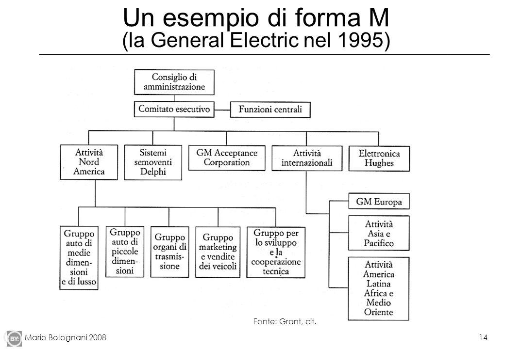 Mario Bolognani 200814 Un esempio di forma M (la General Electric nel 1995) Fonte: Grant, cit.
