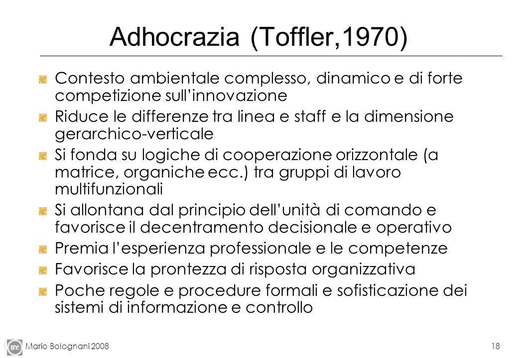 Mario Bolognani 200818 Adhocrazia (Toffler,1970) Contesto ambientale complesso, dinamico e di forte competizione sullinnovazione Riduce le differenze