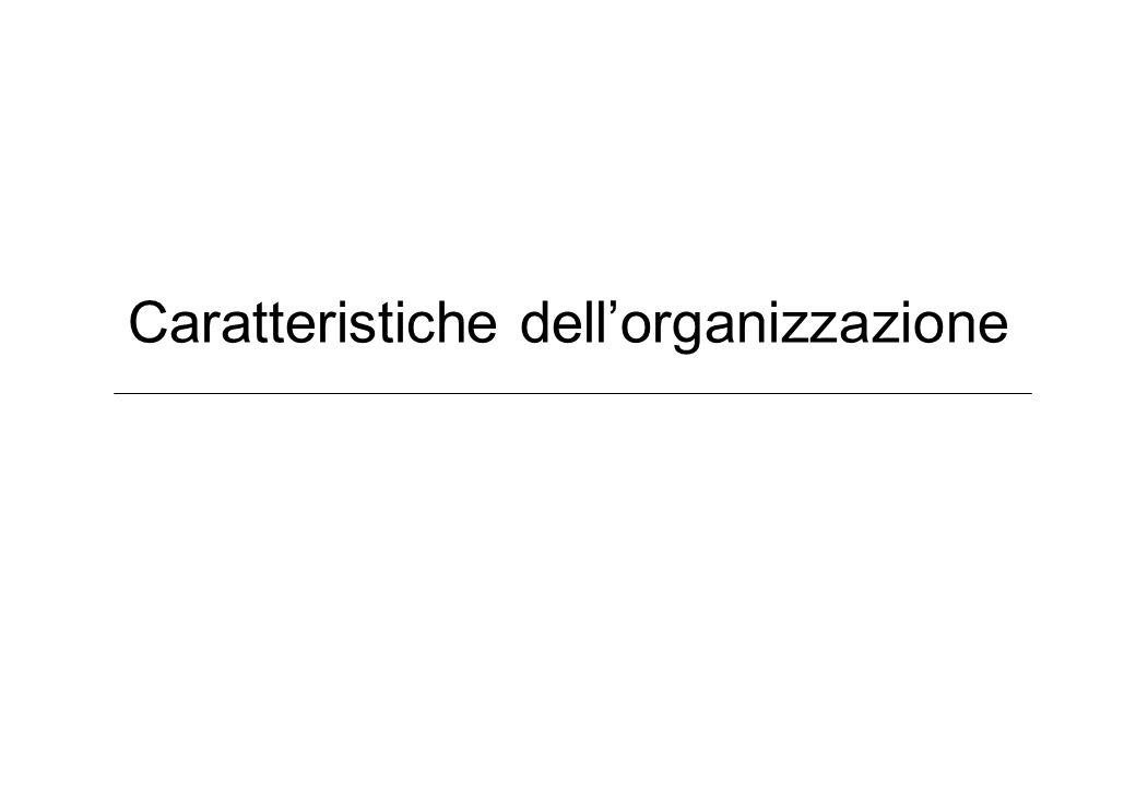 Caratteristiche dellorganizzazione