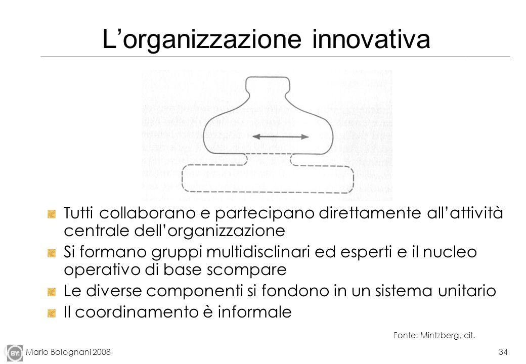 Mario Bolognani 200834 Lorganizzazione innovativa Tutti collaborano e partecipano direttamente allattività centrale dellorganizzazione Si formano grup