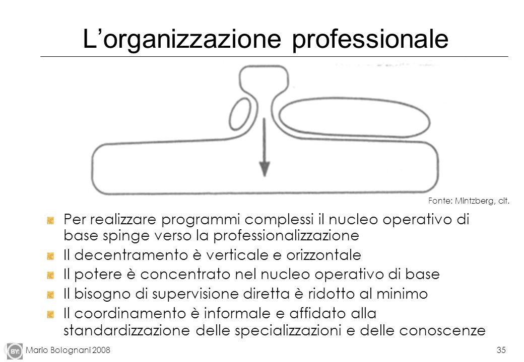 Mario Bolognani 200835 Lorganizzazione professionale Per realizzare programmi complessi il nucleo operativo di base spinge verso la professionalizzazi