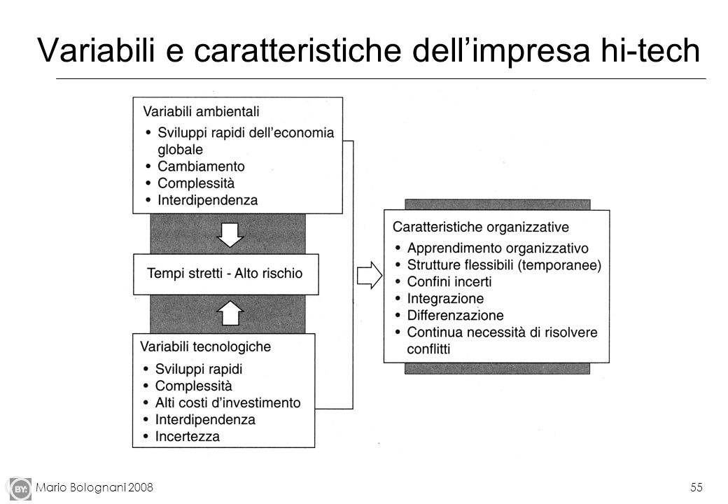 Mario Bolognani 200855 Variabili e caratteristiche dellimpresa hi-tech