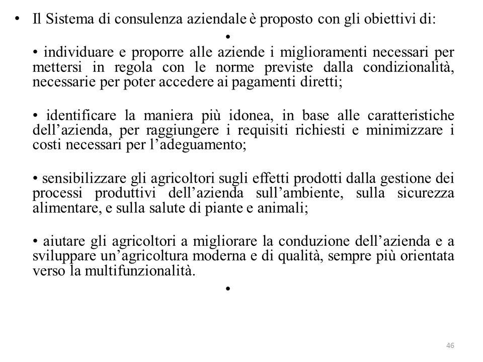 46 Il Sistema di consulenza aziendale è proposto con gli obiettivi di: individuare e proporre alle aziende i miglioramenti necessari per mettersi in r