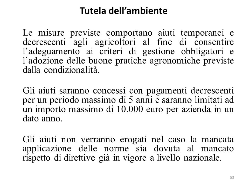 53 Tutela dellambiente Le misure previste comportano aiuti temporanei e decrescenti agli agricoltori al fine di consentire ladeguamento ai criteri di