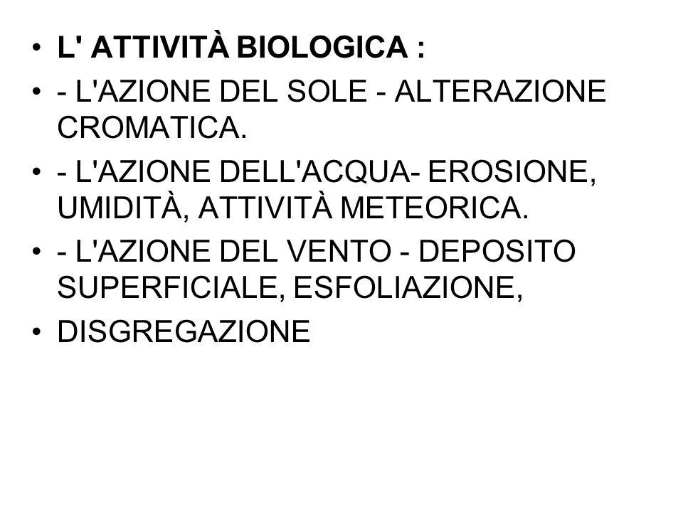 L' ATTIVITÀ BIOLOGICA : - L'AZIONE DEL SOLE - ALTERAZIONE CROMATICA. - L'AZIONE DELL'ACQUA- EROSIONE, UMIDITÀ, ATTIVITÀ METEORICA. - L'AZIONE DEL VENT
