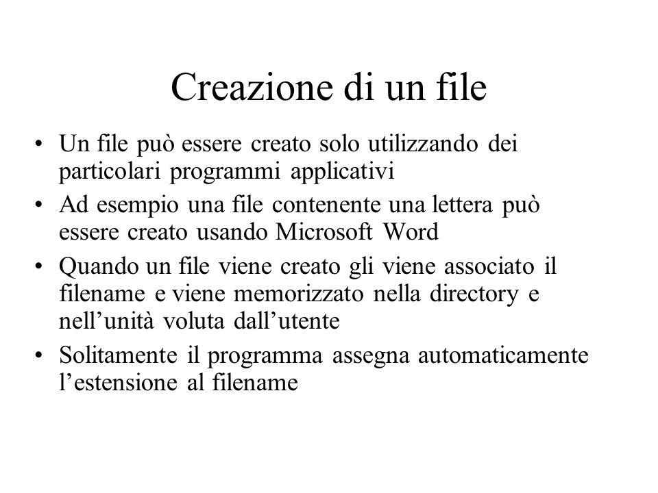 Creazione di un file Un file può essere creato solo utilizzando dei particolari programmi applicativi Ad esempio una file contenente una lettera può e
