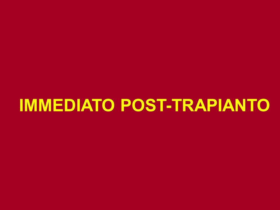 IMMEDIATO POST-TRAPIANTO