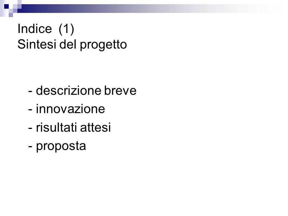 Indice (1) Sintesi del progetto - descrizione breve - innovazione - risultati attesi - proposta
