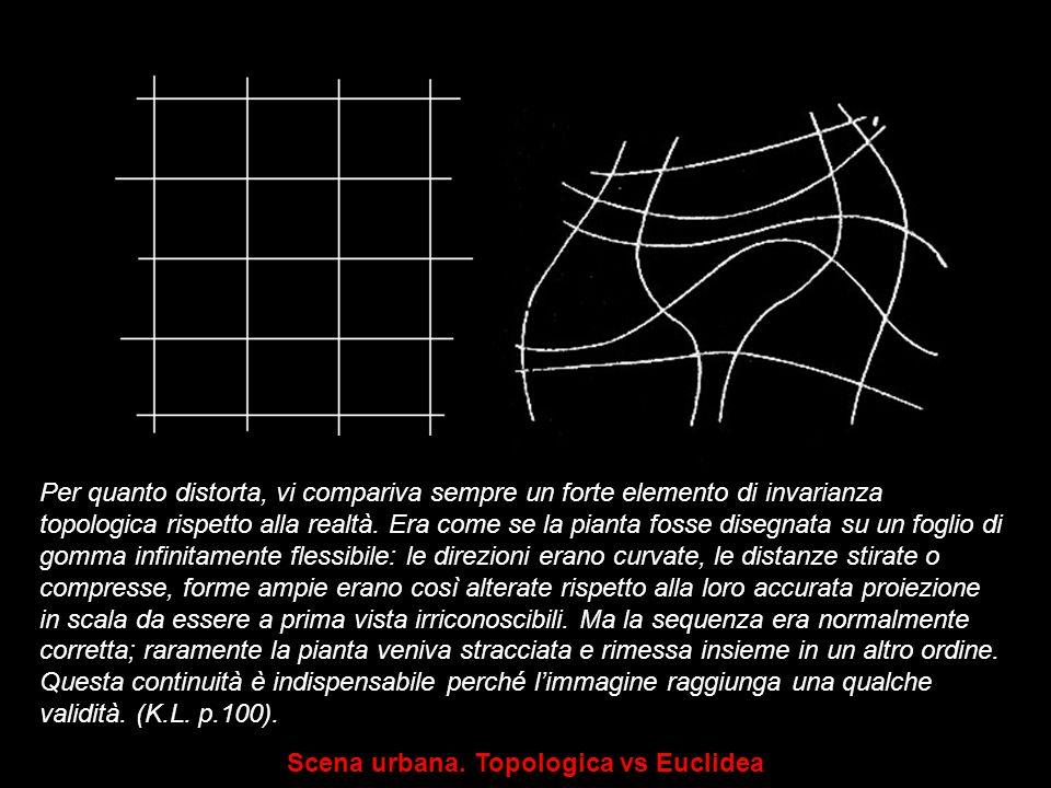 Per quanto distorta, vi compariva sempre un forte elemento di invarianza topologica rispetto alla realtà. Era come se la pianta fosse disegnata su un