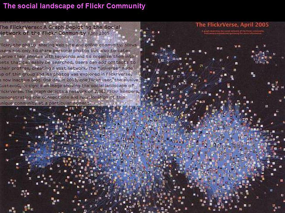 The social landscape of Flickr Community