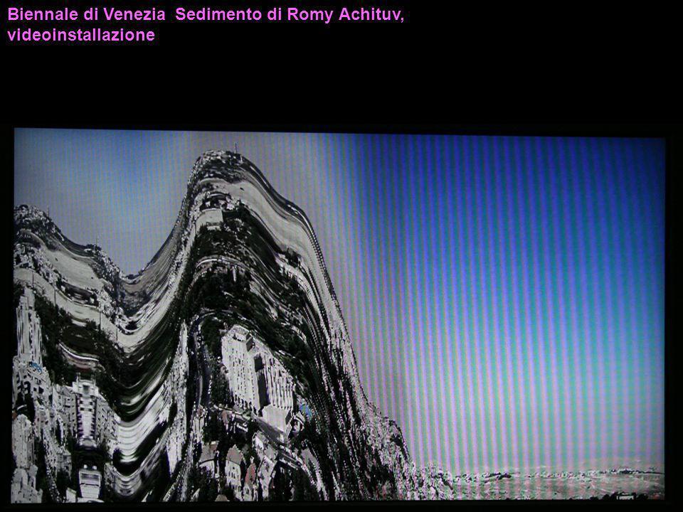 Biennale di Venezia Sedimento di Romy Achituv, videoinstallazione