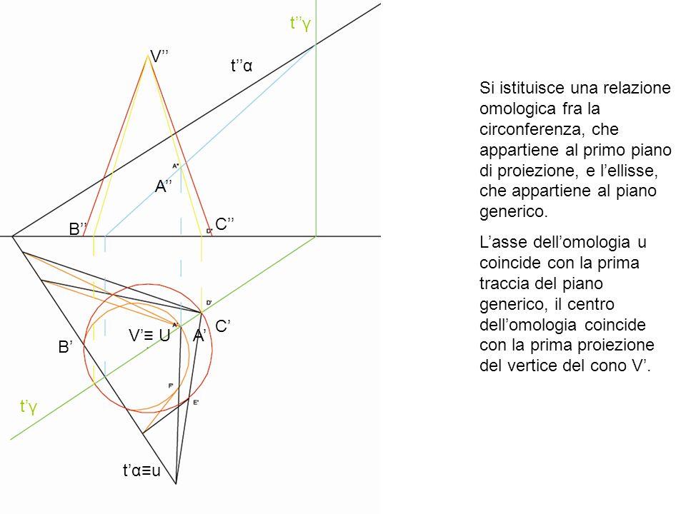 V V U B B C C A A tγtγ tγtγ tαtα tαutαu Si istituisce una relazione omologica fra la circonferenza, che appartiene al primo piano di proiezione, e lel