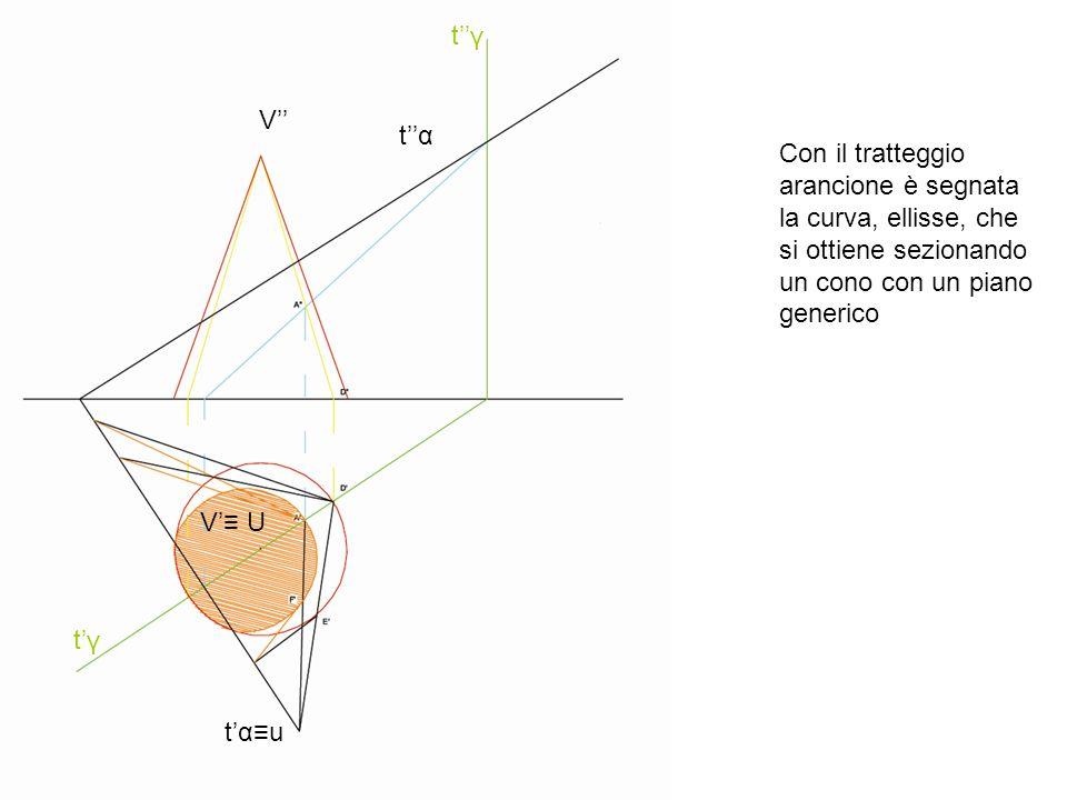V V U tγtγ tγtγ tαtα tαutαu Con il tratteggio arancione è segnata la curva, ellisse, che si ottiene sezionando un cono con un piano generico