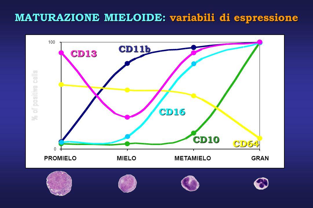 0 100 PROMIELOMIELOMETAMIELOGRAN CD11b CD10 CD16 CD64 CD13 MATURAZIONE MIELOIDE: variabili di espressione