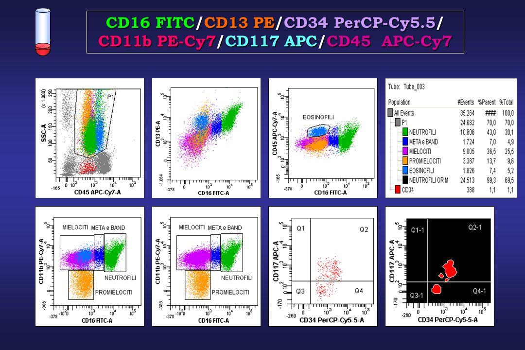 CD16 FITC/CD13 PE/CD34 PerCP-Cy5.5/ CD11b PE-Cy7/CD117 APC/CD45 APC-Cy7
