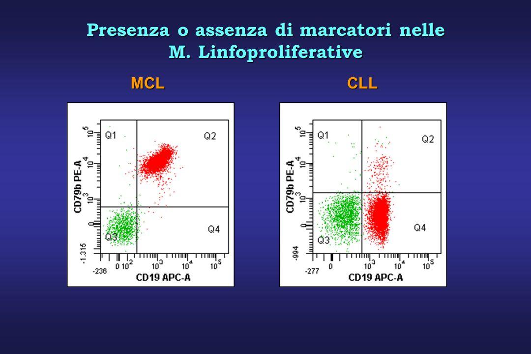 Presenza o assenza di marcatori nelle M. Linfoproliferative MCLCLL