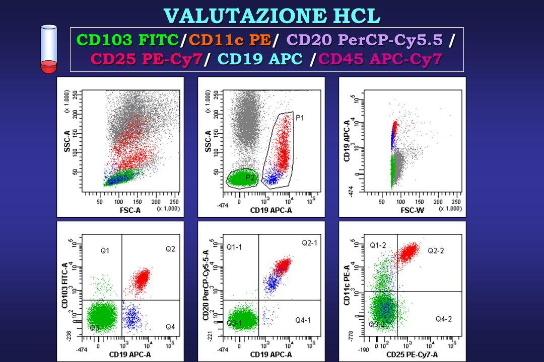 VALUTAZIONE HCL CD103 FITC/CD11c PE/ CD20 PerCP-Cy5.5 / CD25 PE-Cy7/ CD19 APC /CD45 APC-Cy7