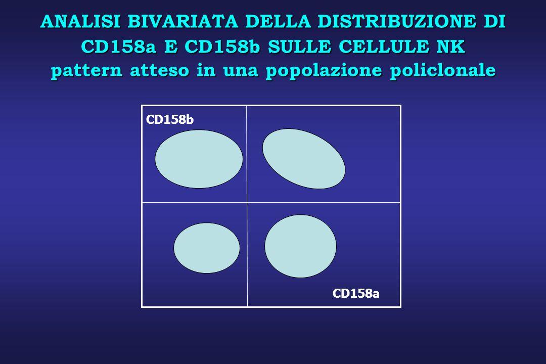 ANALISI BIVARIATA DELLA DISTRIBUZIONE DI CD158a E CD158b SULLE CELLULE NK pattern atteso in una popolazione policlonale CD158a CD158b