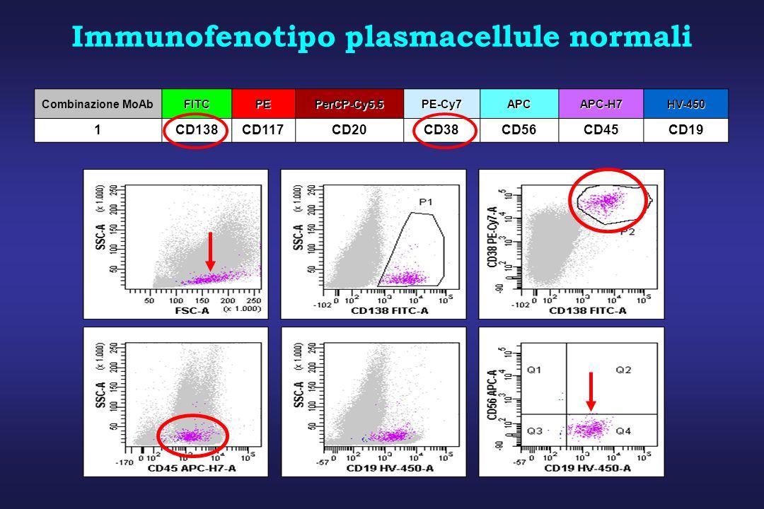 Immunofenotipo plasmacellule normali Combinazione MoAbFITCPEPerCP-Cy5.5PE-Cy7APCAPC-H7HV-450 1CD138CD117CD20CD38CD56CD45CD19