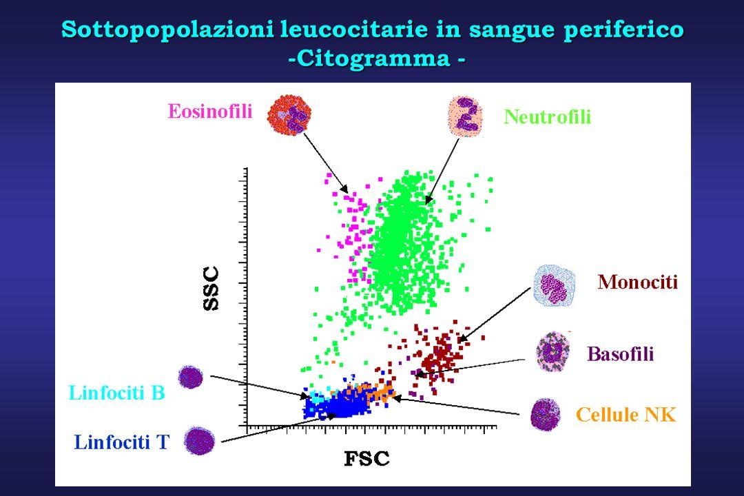 Sottopopolazioni leucocitarie in sangue periferico -Citogramma - -Citogramma - LINFOCITI MONOCITI LINFOCITI MONOCITI NEUTROFILI LINFOCITI MONOCITI NEU